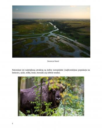 Wakacje w Polsce-Geografia Weronika Wiktorowska 7c-5