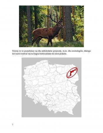 Wakacje w Polsce-Geografia Weronika Wiktorowska 7c-6
