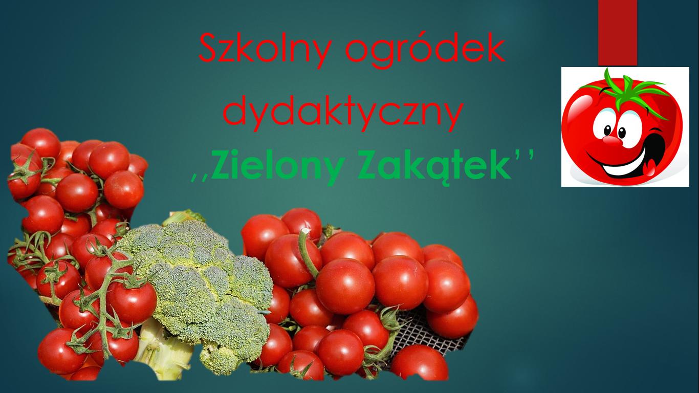 pomidorek.png